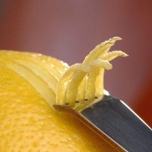 garneer orange